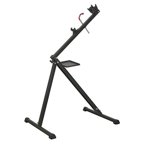 sealey bike stand