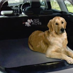 boot-liner-dog