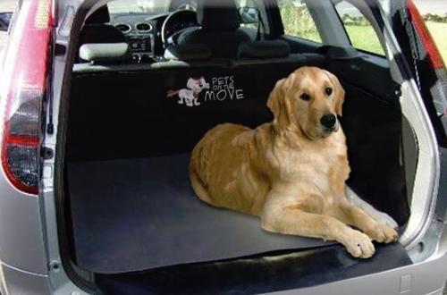 boot-liner-dog